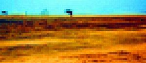sivatagi pánik